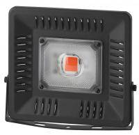ЭРА FITO-50W-LED BLUERED
